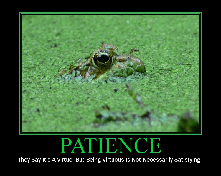 PATIENCE: They say it's a virtue. But being virtuous is not necessarily