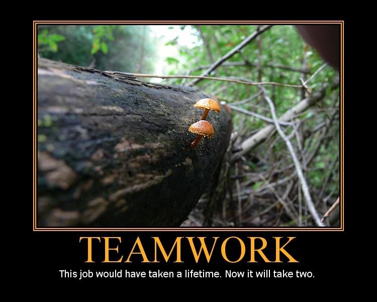 funny teamwork quotes. Funny Teamwork Quotes - Page 2
